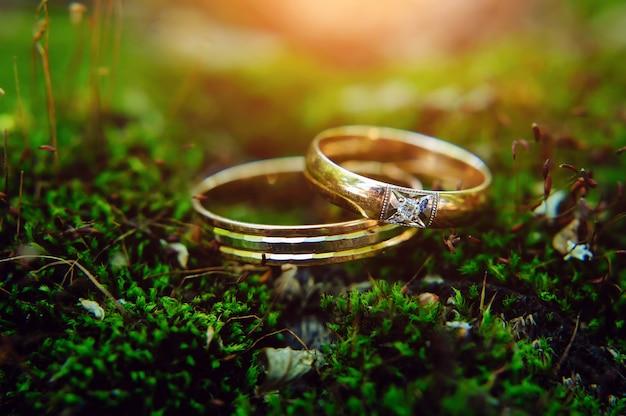 Close up - gouden ringen van bruid en bruidegom liggen op een groen gras. macrofotografie. trouwringen op mos.