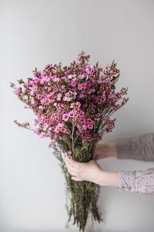 Close-up groot mooi boeket van roze waxflower. bloemachtergrond en behang. bloemen winkelconcept. mooi vers gesneden boeket. bloemen bezorgen.