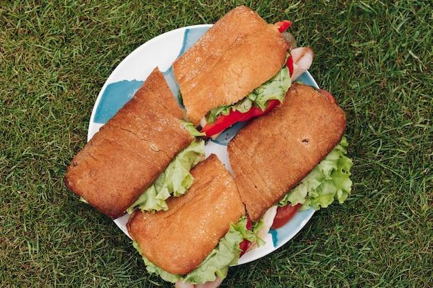 Close-up grote plaat met smakelijke verse sandwich op groen gras. verbazingwekkend lekker fastfood klaar om te genieten van een maaltijd bij een picknick in de buitenlucht op de zomergroene weide