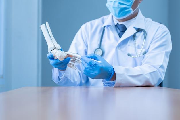 Close-up hand dragen medische handschoenen arts in medische handschoenen houdt kunstmatige bot van de voet in het ziekenhuis.