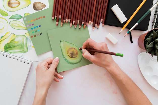 Close-up hand tekenen avocado