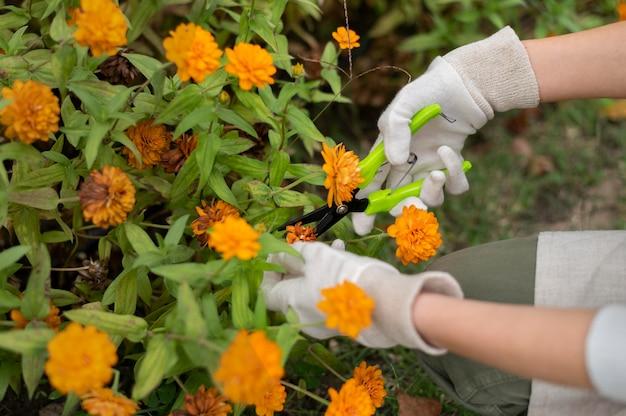 Close-up handen met tuingereedschap