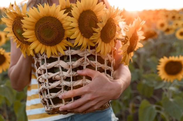 Close-up handen met zonnebloemen mand