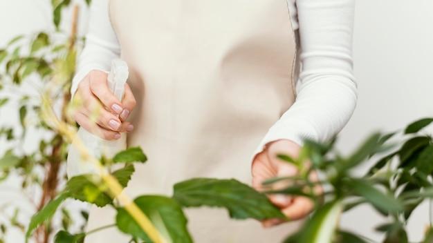 Close-up handen plant water geven
