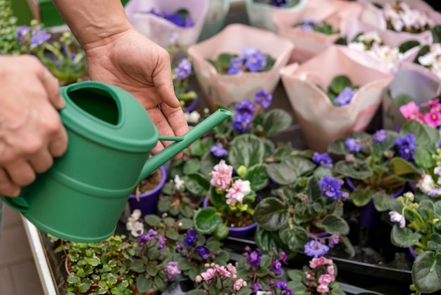 Close-up individuele bloemen water geven