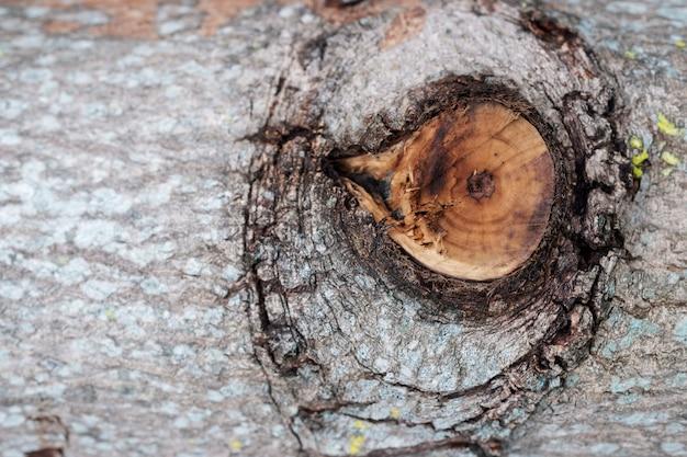 Close-up knoest op houtblokken. hout logboeken textuur achtergrond.