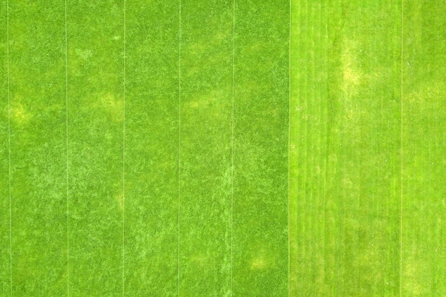 Close-up luchtfoto van het oppervlak van groen vers gemaaid gras op voetbalstadion in de zomer.