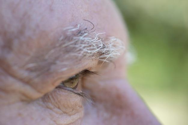 Close-up oog van blanke oude man. portret van oude man buitenshuis. kaukasische mannelijke gezicht achtergrond, close-up ogen, macro