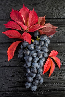 Close-up op blauwe druiven en rode bladeren op de natte zwarte houten achtergrond. herfst achtergrond.