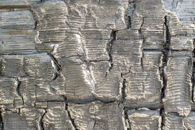 Close-up op de details van verbrande houtstructuur
