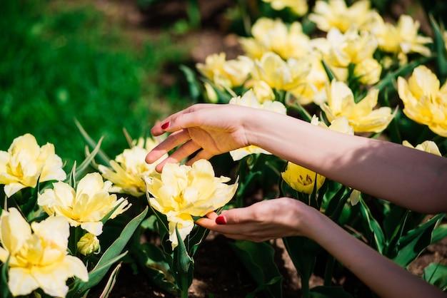 Close-up op handen van de vrouw met gele bloemen