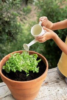 Close-up op het verplanten van planten