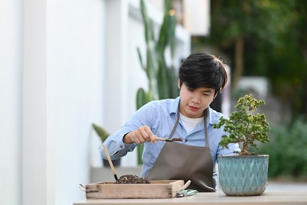Close-up op jonge man thuis bonsaiboom planten