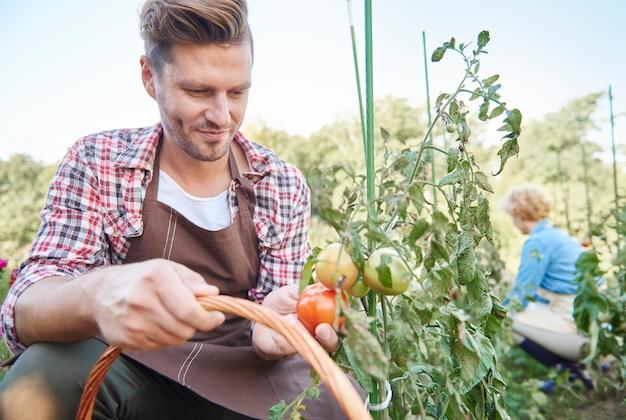 Close-up op man die voor zijn tuin zorgt