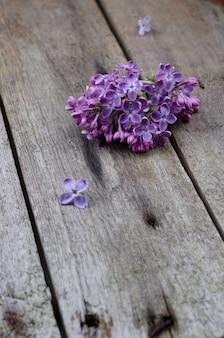 Close-up paarse lila bloemen op een oude houten ondergrond.