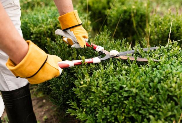 Close-up persoon met behulp van trimmen tool op bush