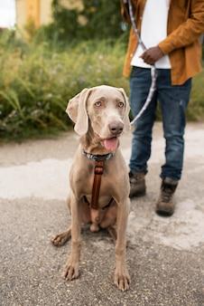 Close-up reiziger met schattige hond