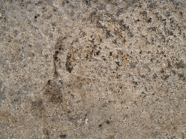 Close-up rotswand oppervlak