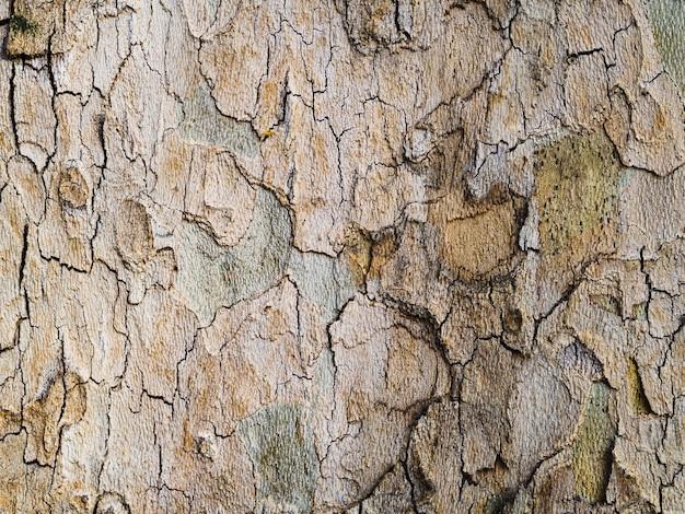 Close-up ruwe houten oppervlak