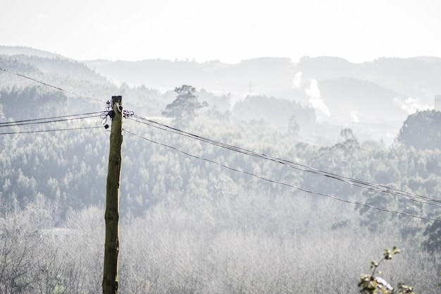 Close-up shot van een houten hoogspanningslijn met bomen en heuvels op de achtergrond
