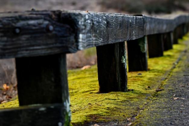 Close-up shot van een houten reling met geel mos eronder