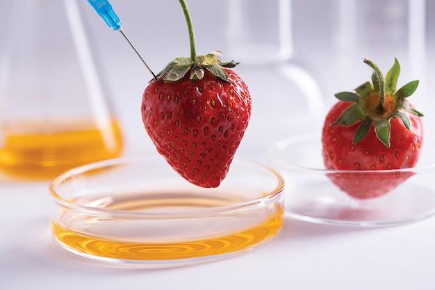 Close-up shot van een spuit die een aardbei prikt voor een dna-extractie-experiment in een laboratorium