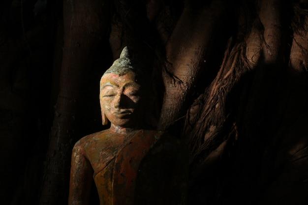 Close-up shot van een standbeeld van klei religieuze boeddha in een griezelig mysterieuze plaats.