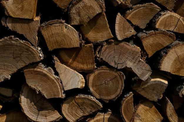 Close-up shot van gesneden boom planten bovenop elkaar - ideaal voor achtergrond
