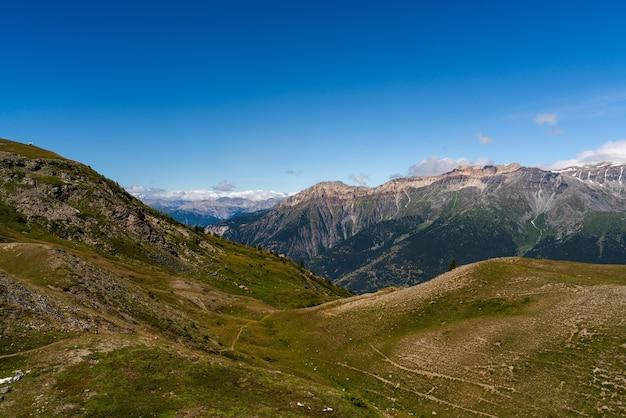 Close-up shot van het natuurpark grand del bosco di salbertrand montagne italië