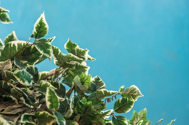 Close-up shot van kunstmatige groene bladeren met een blauwe achtergrond