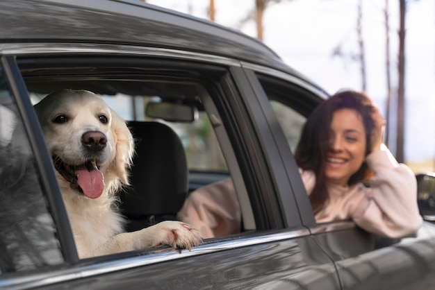 Close-up smiley vrouw met hond in auto
