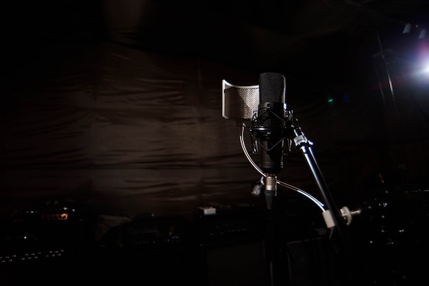 Close-up studio condensator microfoon met pop-filter en anti-vi