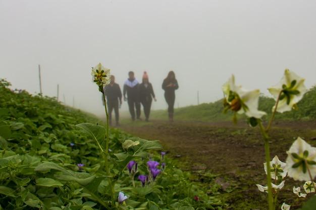 Close-up van bloemen op een rood onverharde pad op de achtergrond vier mensen onscherp en bewolkte hemel