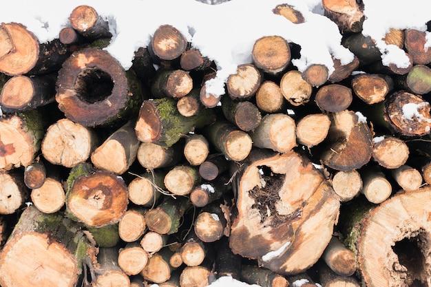 Close-up van boomboomstammen die in sneeuw worden behandeld