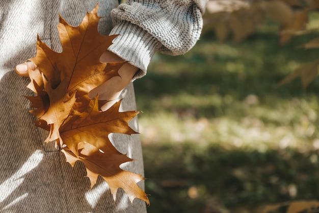 Close-up van bruine eikenbladeren in de zak van grijze vrouwenjas atmosferische herfstcompositie su...