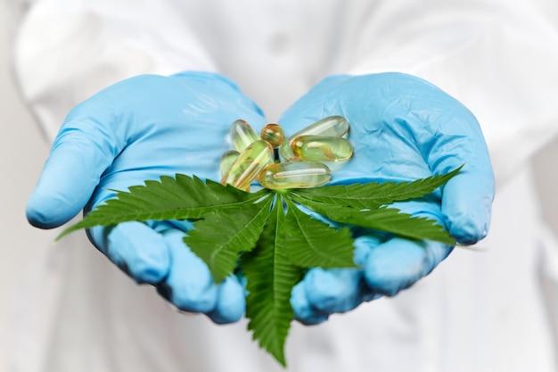 Close-up van cannabisblad en capsules met cbd-hennepolie in handen van de wetenschapper in blauwe rubberen handschoenen