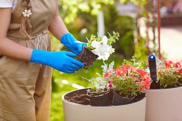 Close-up van de hand die van een meisje bloemen in de tuin overplanten.