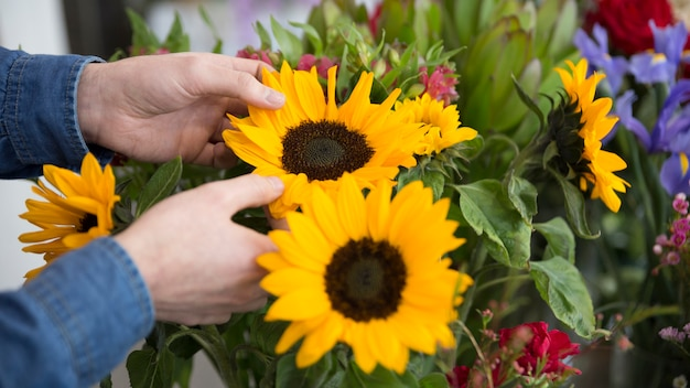 Close-up van de hand van de bloemist die gele zonnebloem in het boeket houdt