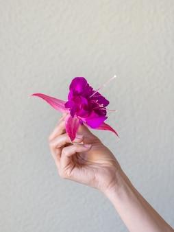 Close-up van de hand van de mooie vrouw met paarse bloem
