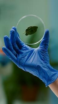 Close-up van de handen van de bioloogvrouw die een medisch monster van groen blad vasthouden dat genetische mutatie ontdekt