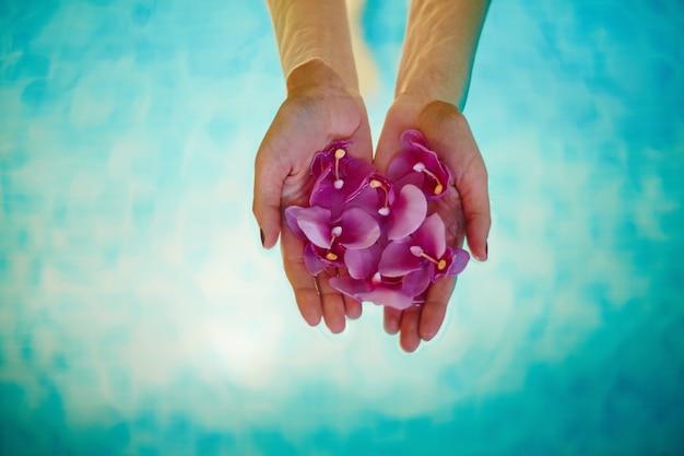 Close-up van de handen van de vrouw met orchideeën