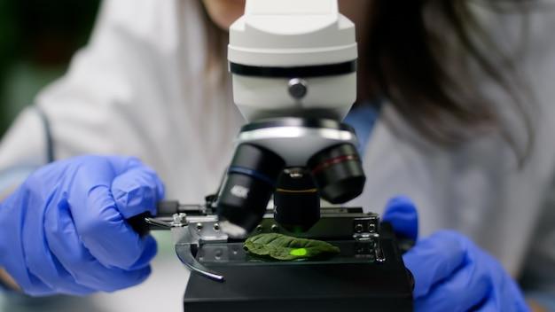 Close-up van de handen van een scheikundige onderzoeker die bladmonster bekijkt met behulp van een microscoop die genetische mutatie op plant observeert