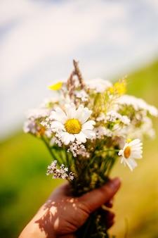 Close-up van de handholding van de vrouw bos van de zomer wilde bloemen tegen hemel en gebied