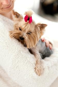Close-up van de hond van de eigenaarholding