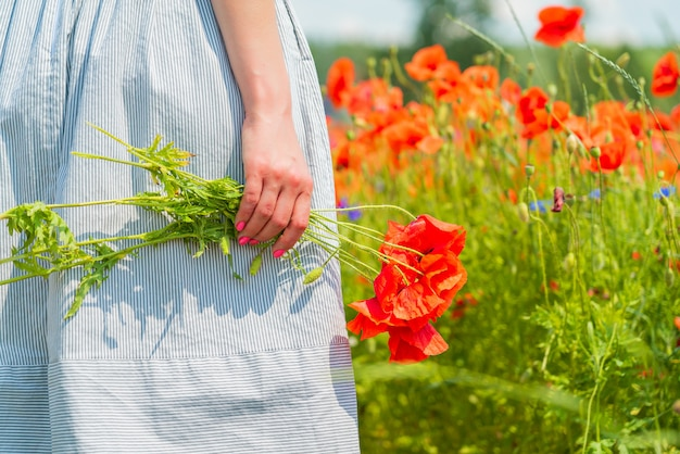 Close-up van de jonge mooie vrouw houdt een papaverboeket in haar handen in een papaverveld op zonnige zomerdag