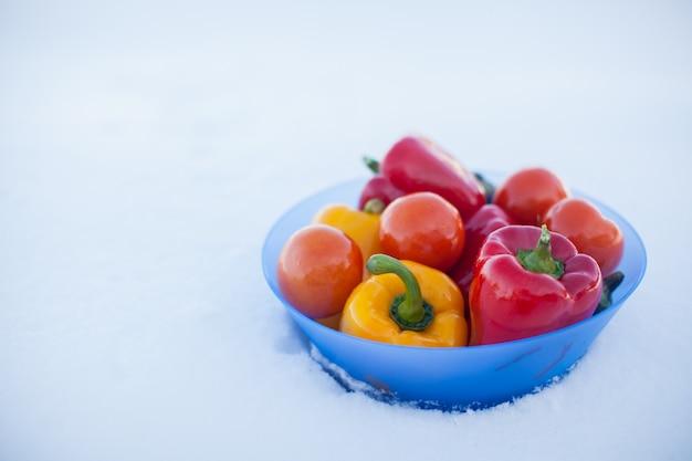 Close-up van diepe plaat met heerlijke groenten: paprika, aubergine en tomaten op witte sneeuw