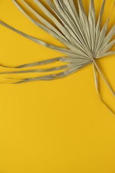 Close-up van droog tropisch palmblad