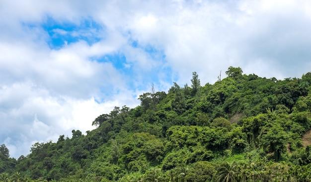 Close-up van een groene berg onder de heldere zonnige hemel