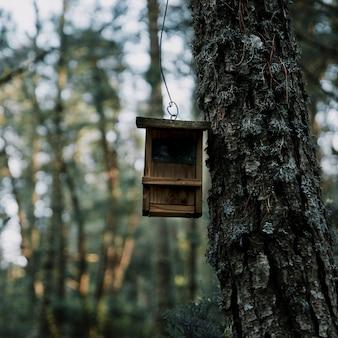 Close-up van een houten vogelvoeder en een boomboomstam