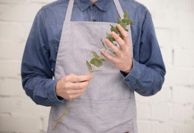 Close-up van een mannelijke bloemist in schort bedrijf tak van eucalyptus populus bladeren